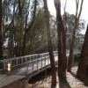 Wangaratta Walk from Apex Park 3.1kms